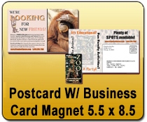 Postcard w/Business Card Magnet 5.5 x 8.5 - YARD SIGNS & Magnetic Cards | Cheapest EDDM Printing